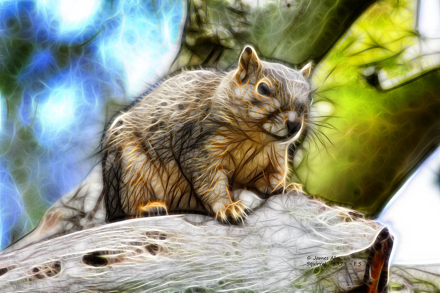 Squirrel - 8379- F - S Digital Art
