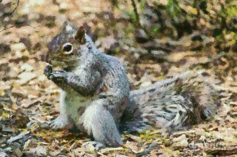 Squirrel In Central Park Painting  - Squirrel In Central Park Fine Art Print