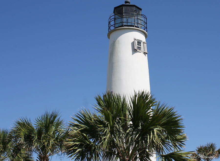 saint george island chat Zillow helps you find the newest saint george island real estate listings by analyzing information on thousands of single family homes for sale in saint george island, florida and across the united states, we calculate home values (zestimates) and the zillow home value price index.
