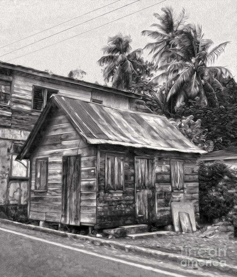 St Lucia - Old Shack Photograph