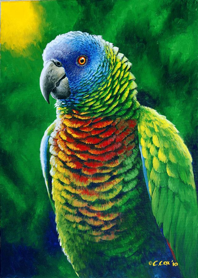 St. Lucia Parrot - Fine Colours is a painting by Christopher Cox which ...
