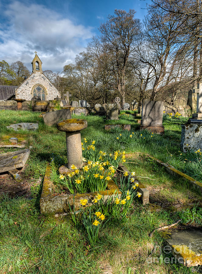 St Tysilio Graveyard Photograph