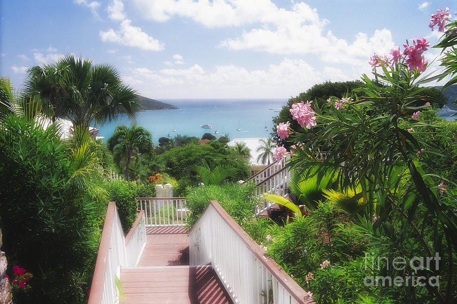 Stairs To Paradise Photograph  - Stairs To Paradise Fine Art Print
