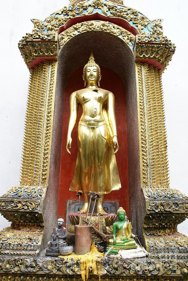 Standing Buddha Photograph