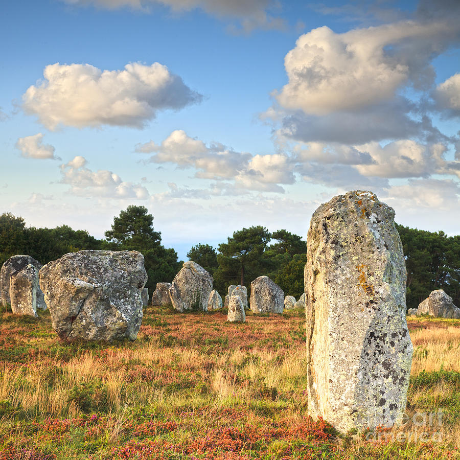 Standing Stones Carnac Brittany Photograph