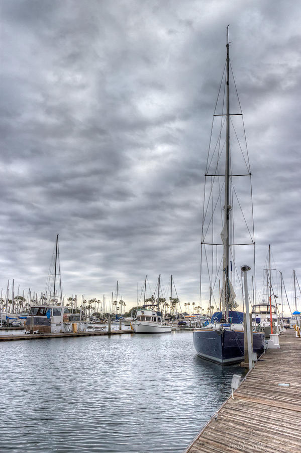 Dock Photograph - Standing Tall by Heidi Smith