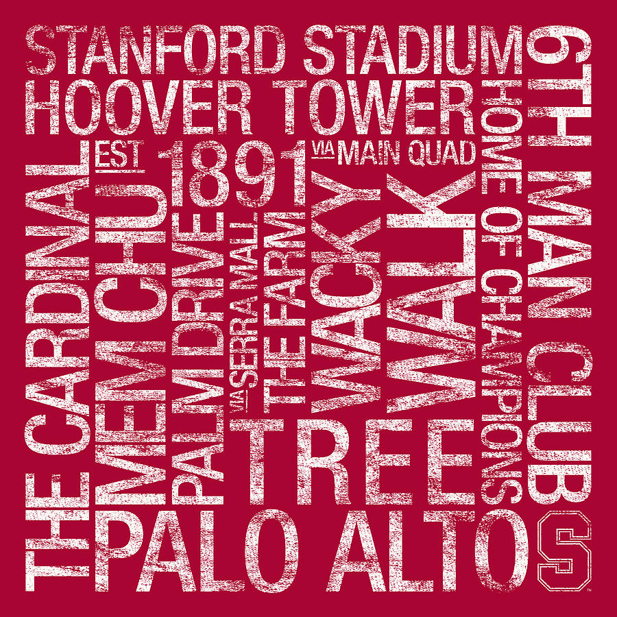 Stanford College Colors Subway Art Photograph