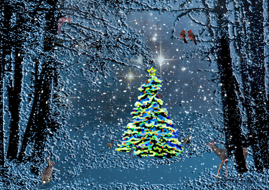 Night Photograph - Starry Night Forest Christmas by Michele Avanti