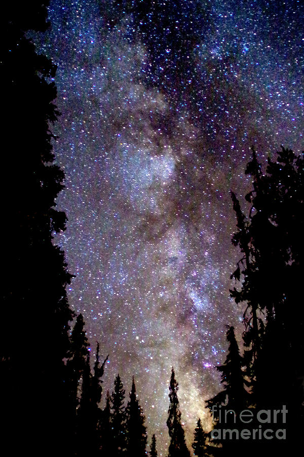 Starry Night -  The Milky Way Photograph