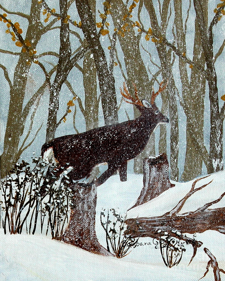 Startled Buck - White Tail Deer Painting