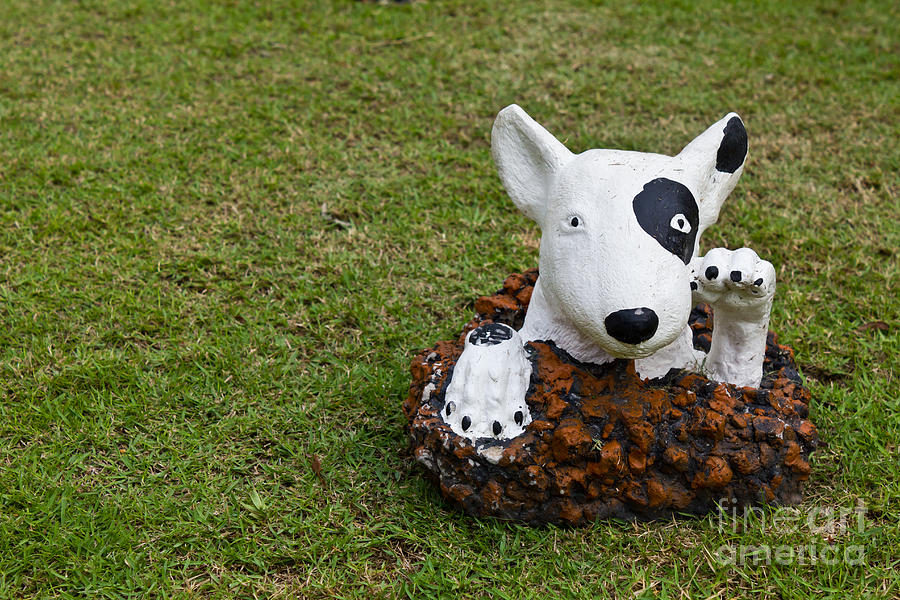 Statue Of A Dog Decorated On The Lawn Photograph