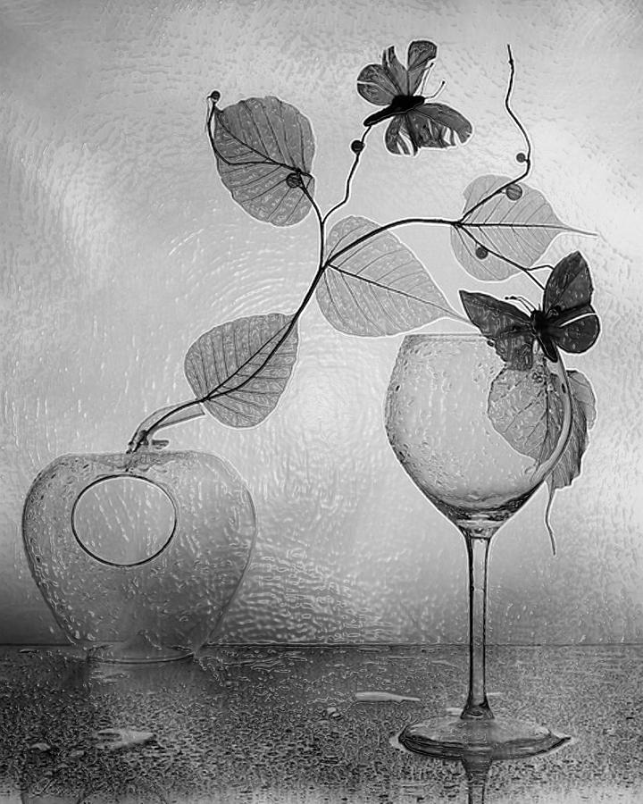 3d Black White Still Life art Beauty
