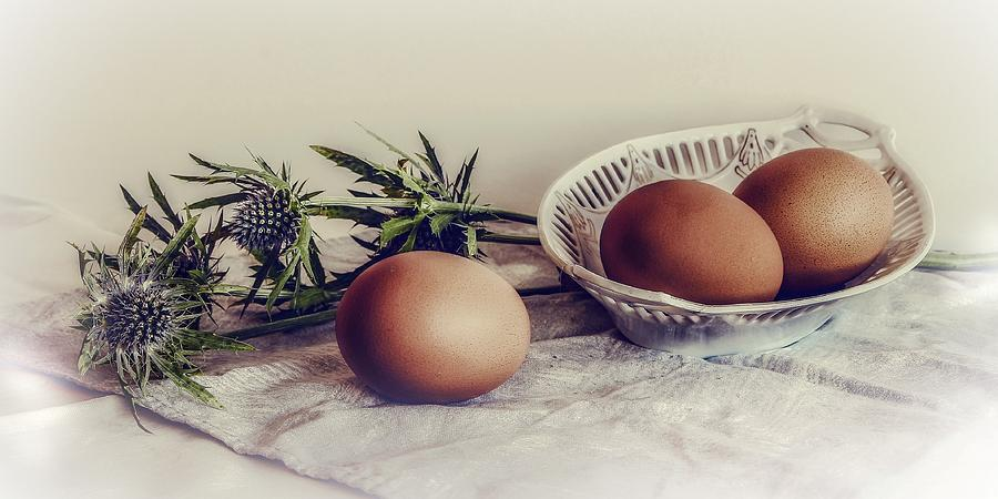 Still Life With Eggs And Thistle Photograph