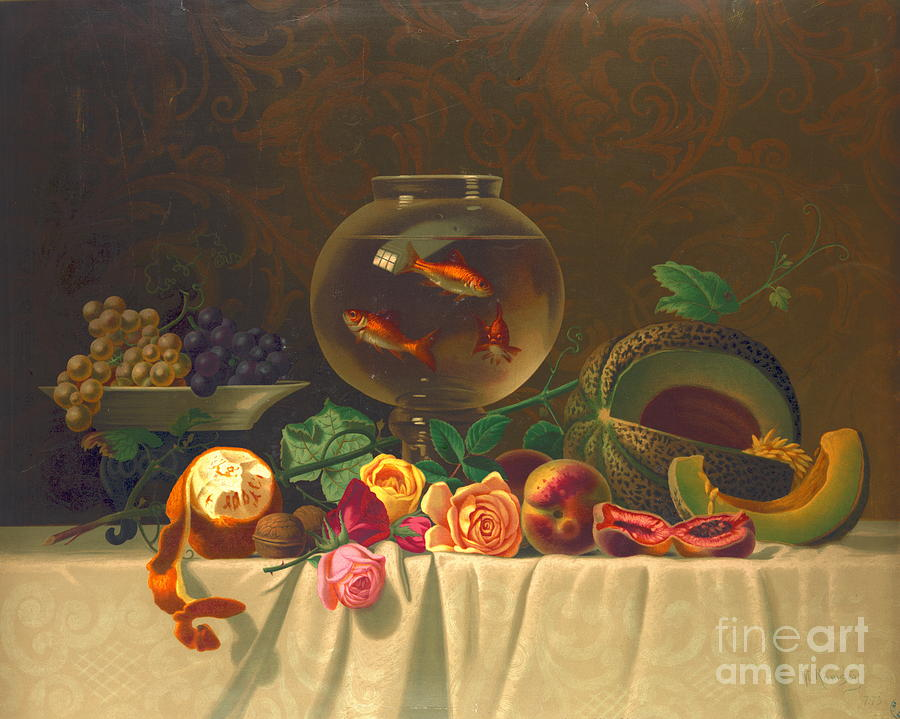 Still Life With Goldfish 1873 Photograph