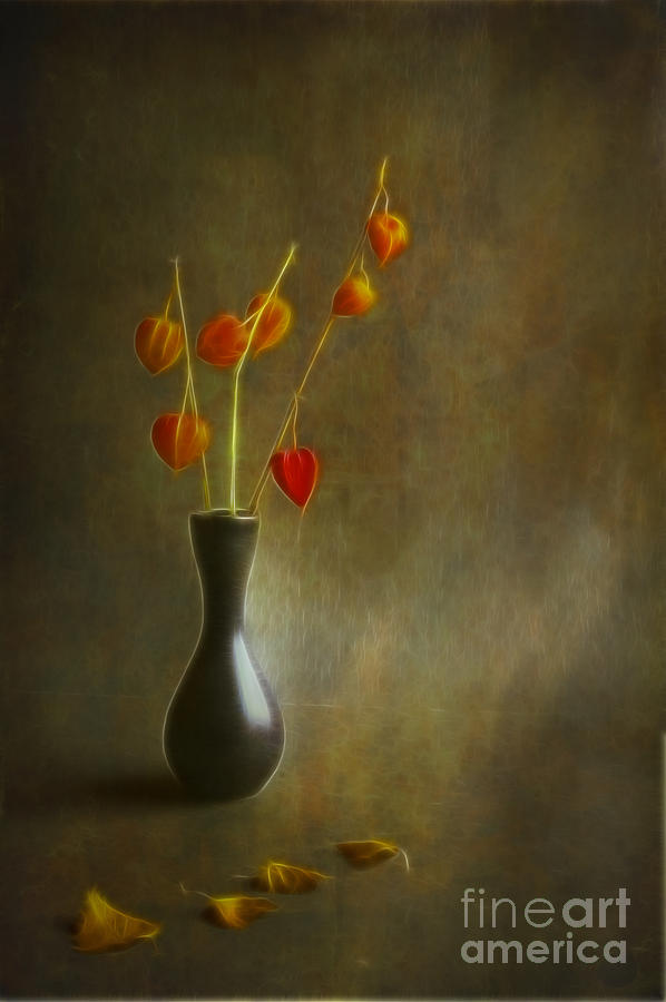 Still Of Life Photograph  - Still Of Life Fine Art Print