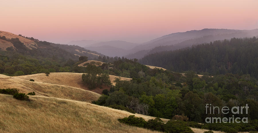 Stillness At Monte Bello Photograph