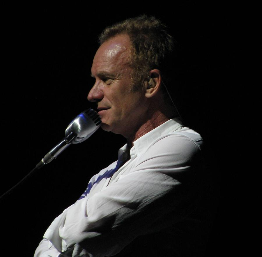 Sting Photograph - Sting by Melinda Saminski