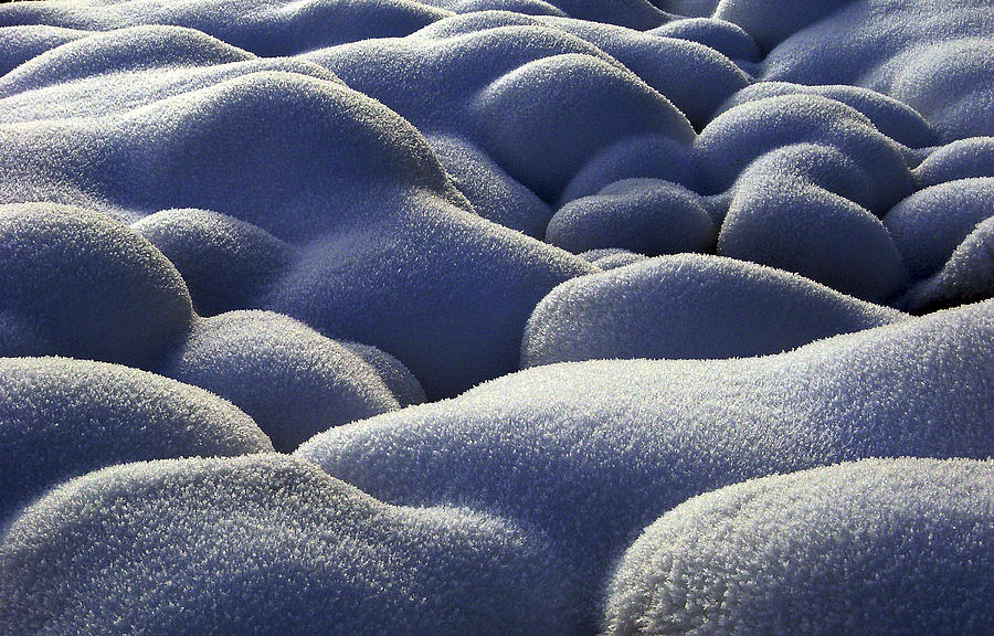 Frost Photograph - Stone Cold by Michael Van Beber