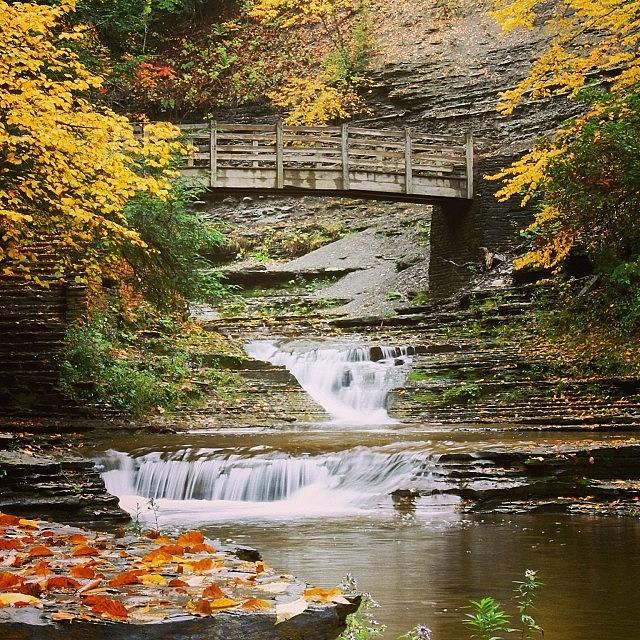 Stony Brook Photograph  - Stony Brook Fine Art Print