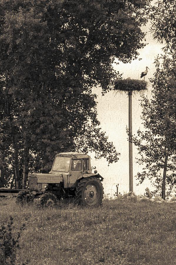 Stork Vs Tractor Photograph