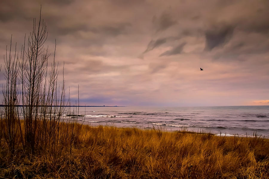 Storm Approaching At Dusk Photograph