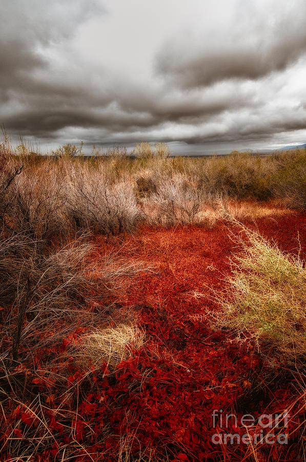 Storm Clouds Photograph