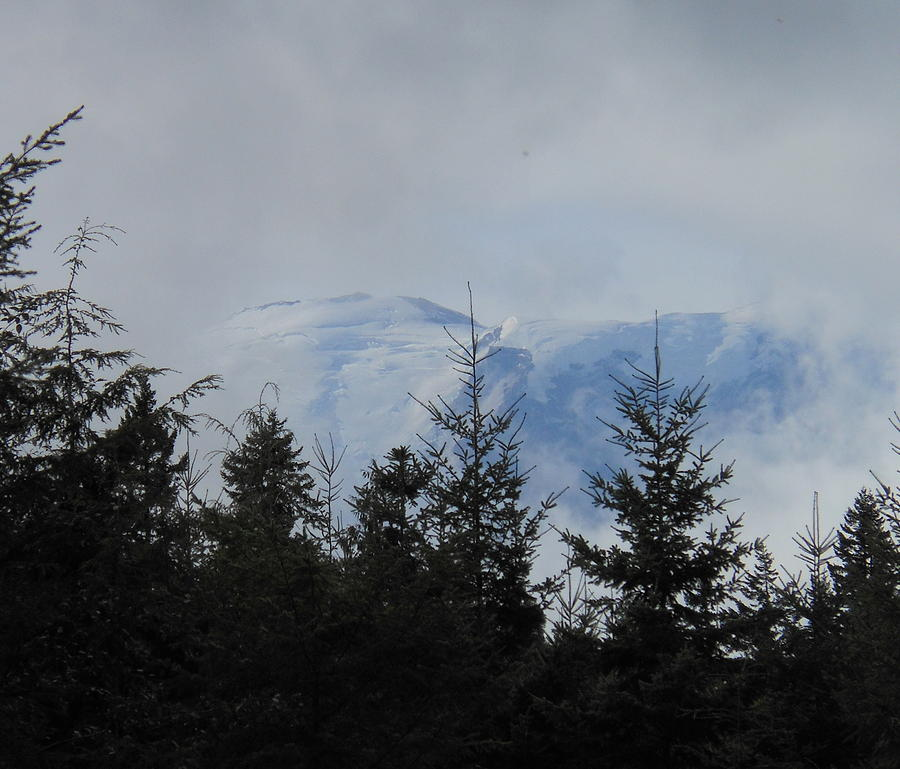 Mt. Rainier Photograph - Stormy Day At Mt. Rainier by Kay Gilley