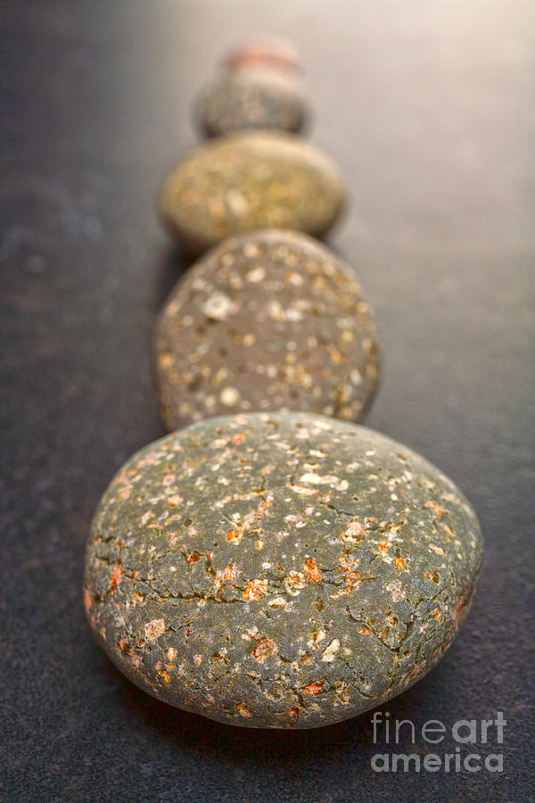Straight Line Of Speckled Grey Pebbles On Dark Background Photograph  - Straight Line Of Speckled Grey Pebbles On Dark Background Fine Art Print