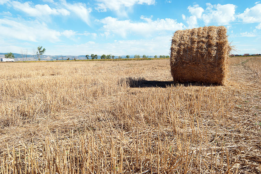 Straw Bales At A Stubbel Field Photograph