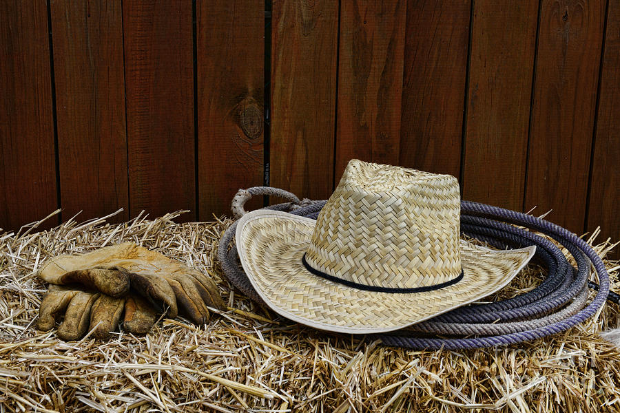Paul Ward Photograph - Straw Hat  On  Hay by Paul Ward