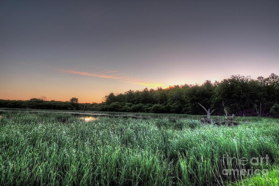 Sunrise Photograph - Streaky Swamp Sunrise by Deborah Smolinske