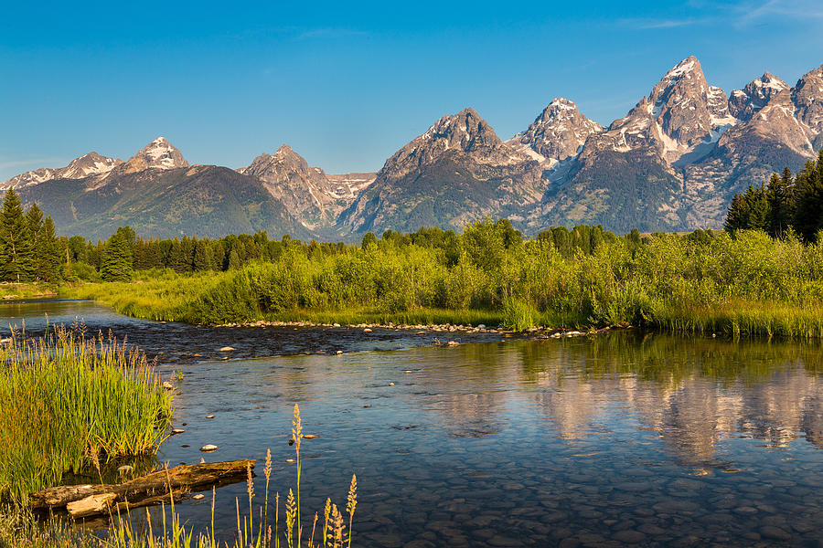 Stream At The Tetons Photograph