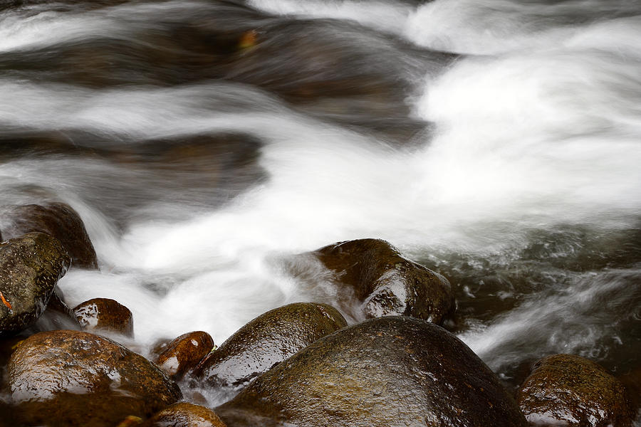 Stream Flowing  Photograph