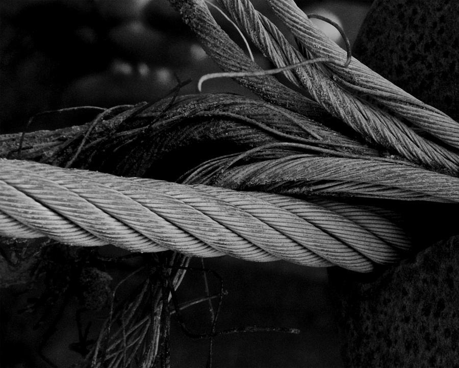 Strength Of Strings Photograph - Strength Of Strings by Odd Jeppesen