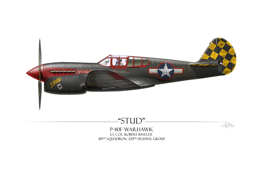 Aviation Painting - Stud P-40 Warhawk - White Background by Craig Tinder