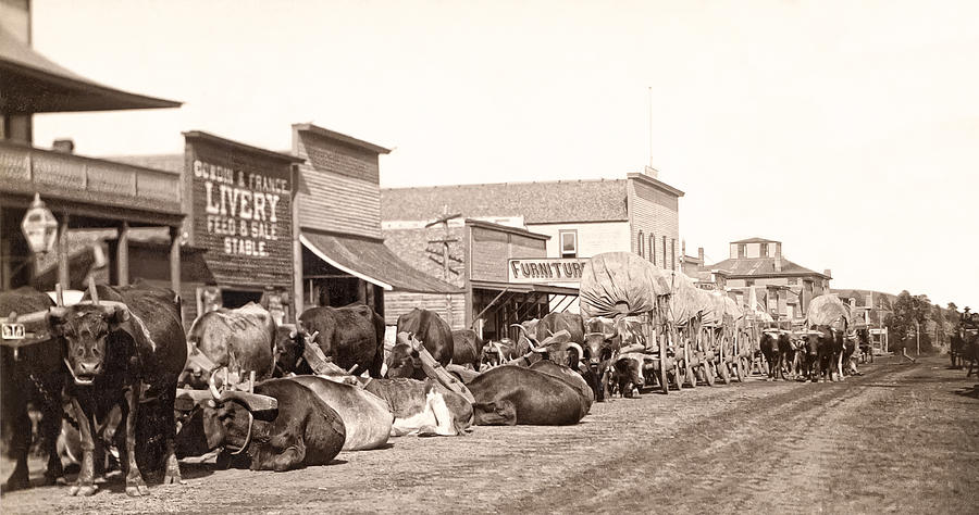 Sturgis South Dakota C. 1890 Photograph