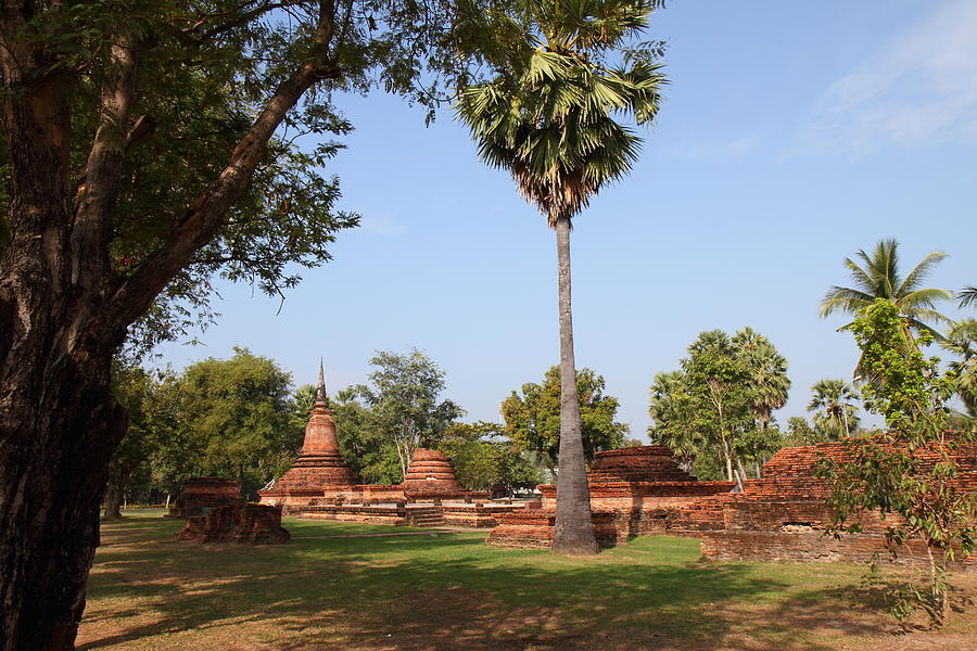 Sukhothai Historical Park - Sukhothai Thailand - 011367 Photograph