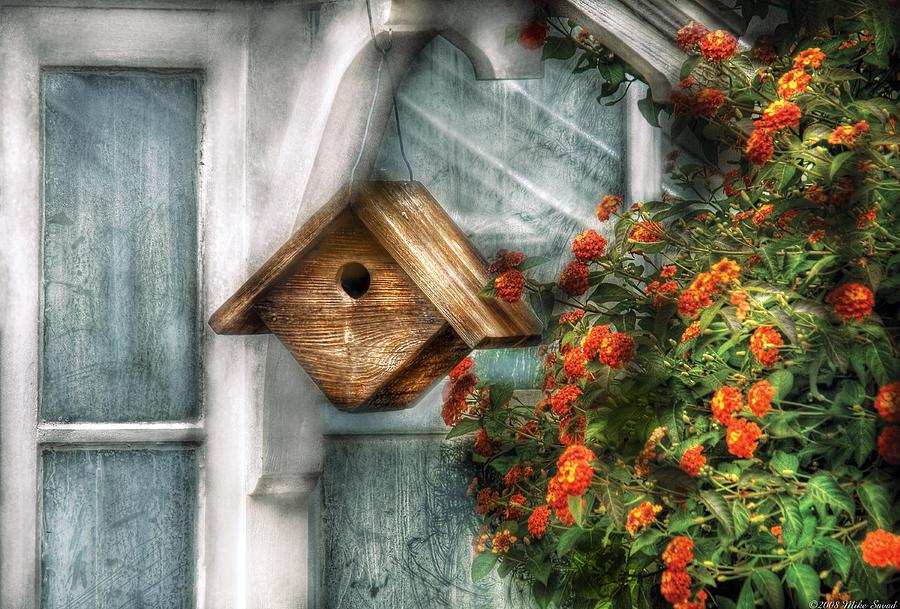 Savad Photograph - Summer - Birdhouse - The Birdhouse by Mike Savad