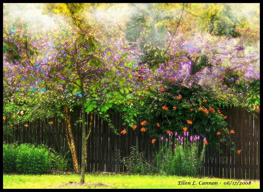 Trees Photograph - Summer Color Burst by Ellen Cannon
