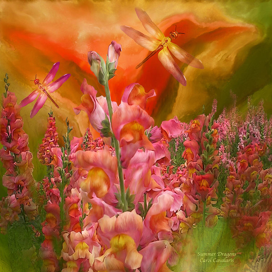 Summer Dragons - Square Mixed Media  - Summer Dragons - Square Fine Art Print