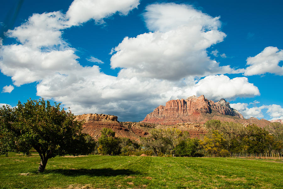 Summer Monsoon Clouds Over Mount Kinesava Zion National Park Rockville Utah Photograph