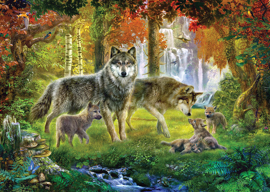 Summer Wolf Family is a photograph by Jan Patrik Krasny which was ...