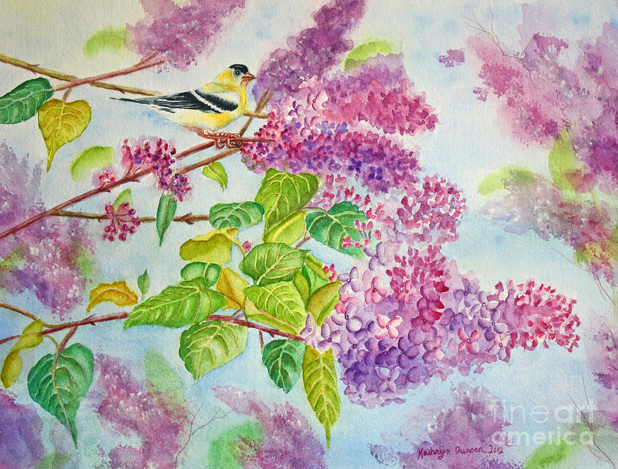 Finch Painting - Summertime Arrival II - Goldfinch And Lilacs by Kathryn Duncan
