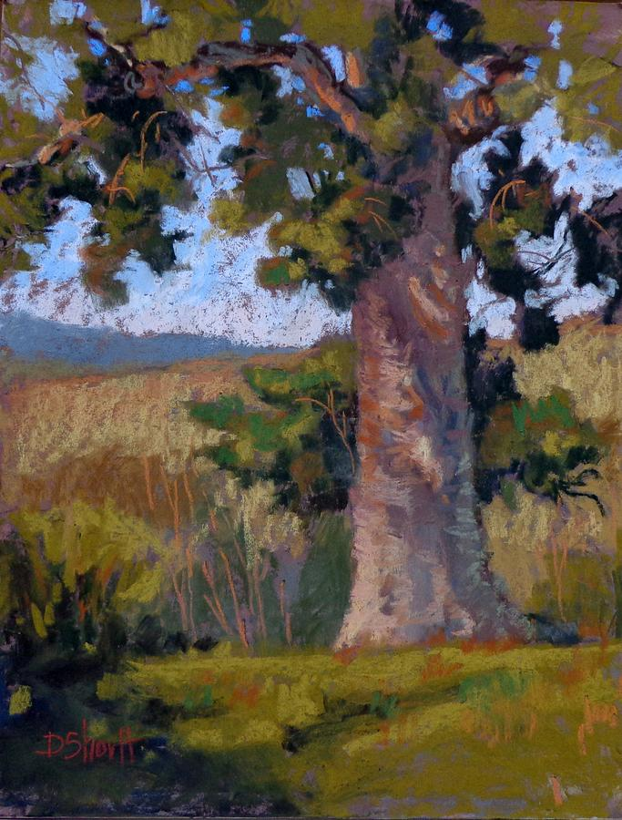 Summit Tree Painting  - Summit Tree Fine Art Print