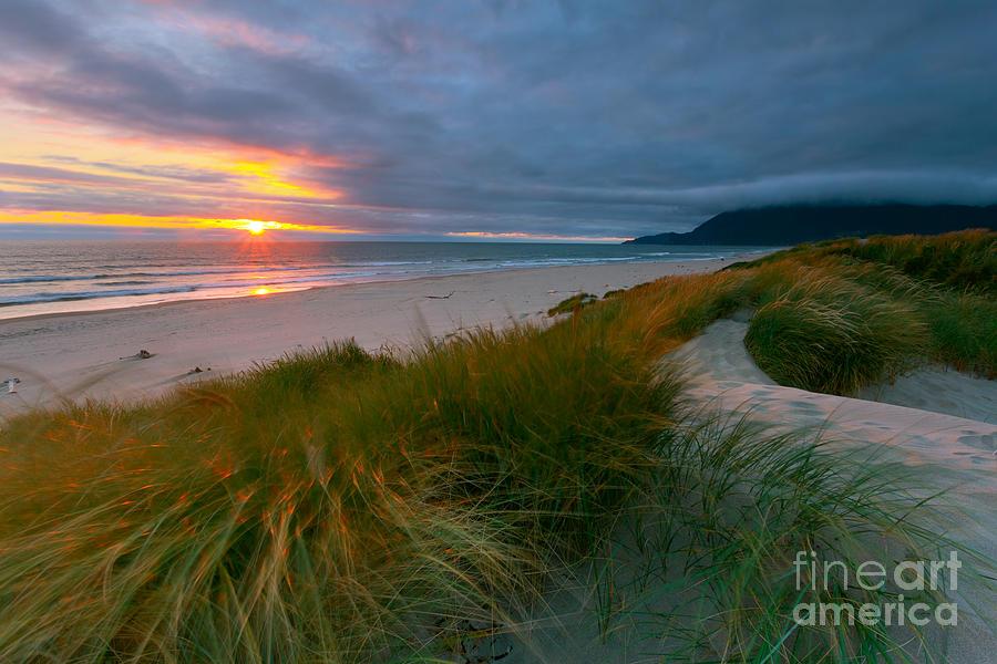 Sun Dunes Photograph