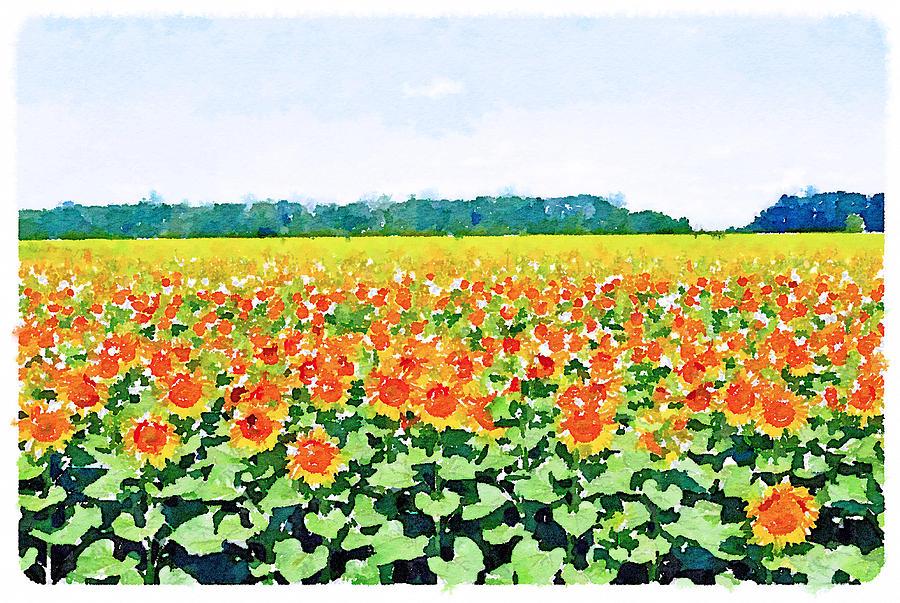 Sun Digital Art - Sun Flower Landscape by Yury Malkov