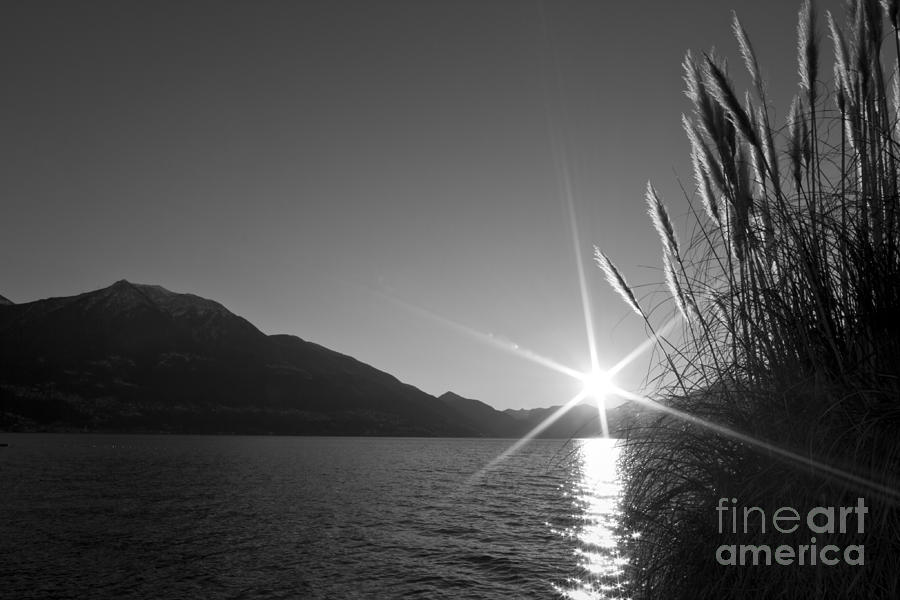 Sunbeam Photograph  - Sunbeam Fine Art Print