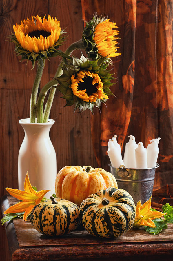Pumpkin Photograph - Sunflower And Gourds Still Life by Amanda And Christopher Elwell
