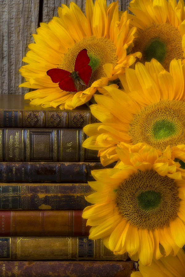 Sunflowers And Old Books Photograph