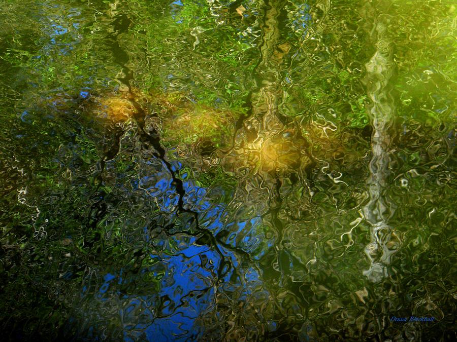 sunlight through trees black - photo #40